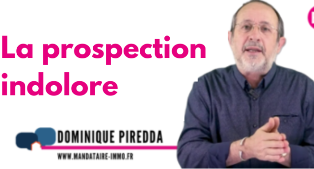 la prospection indolore - Dominique Piredda - mysweetimmo